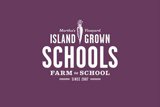 sland Grown Schools Branding - Bluerock Design Co - Design Work Life