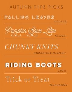 Autumn Type Picks - Studio 404